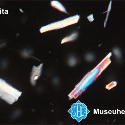Actinolita